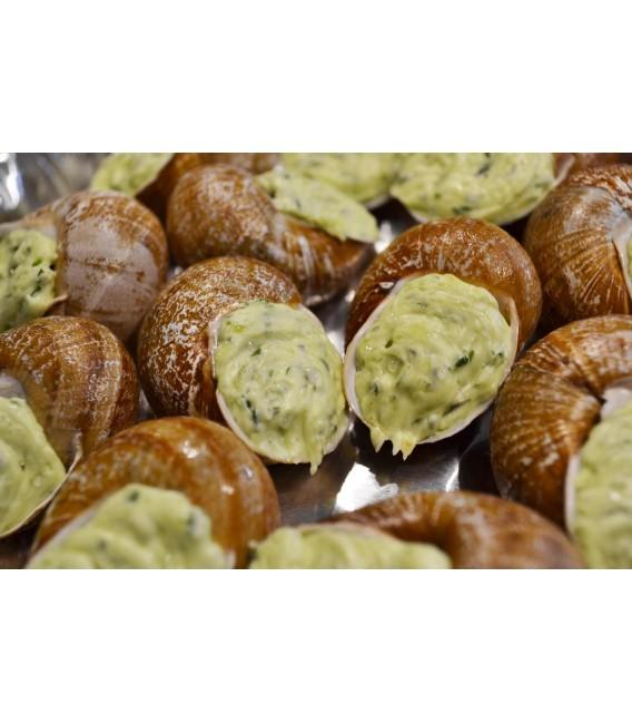 12 escargots en coquille - Noix Noisettes